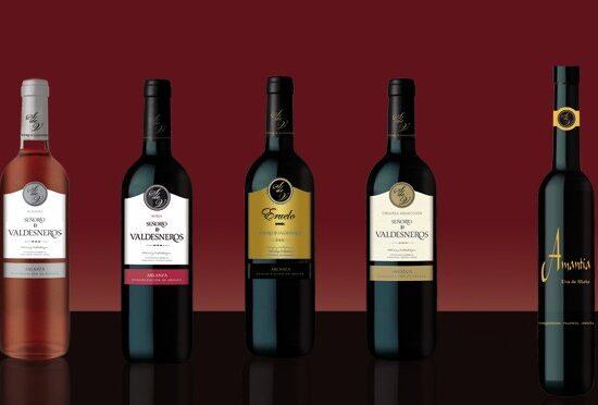 El esplendor vitivinícola del Señorío de Valdesneros